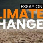 climate-change-essay